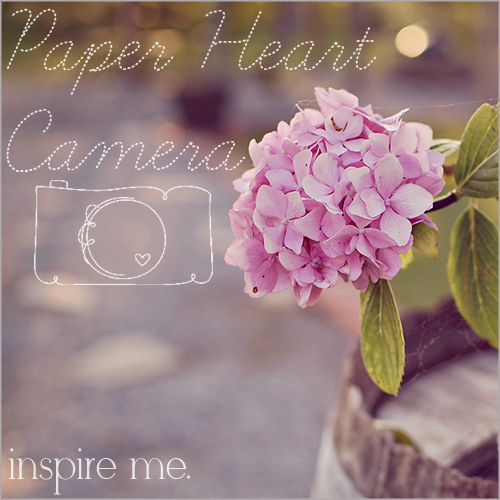 Paper Heart Camera