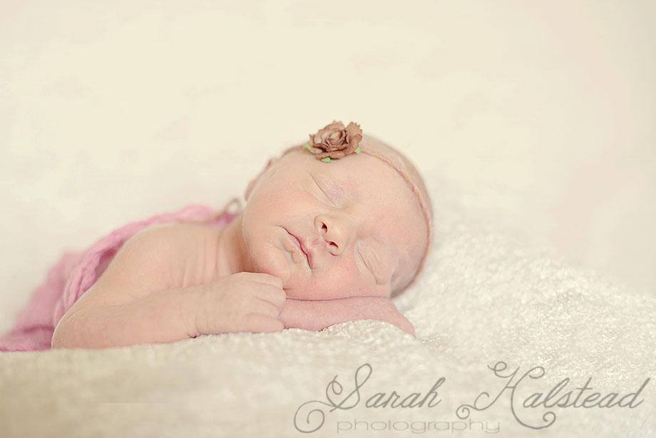 Newborn Photographer Virginia Beach